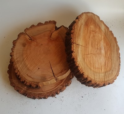 Roundish Wood Stumps
