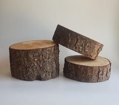Small Wood Stumps