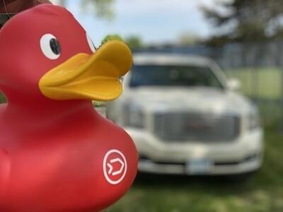 Phucking Ginormous Red Czech Duck! #3556