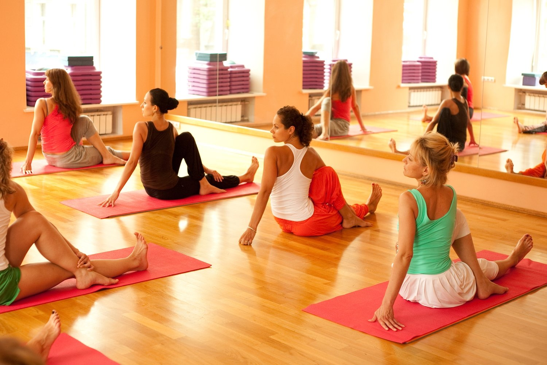 Somatic Exercise Teacher Training, Level 1, March 2020  (Northampton, MA)