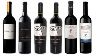 """Next-Level Big Reds—Argentine & Supertuscan"" Wine Selection"