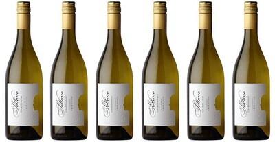 Sottano Chardonnay 2019 // Argentina (case of 6)