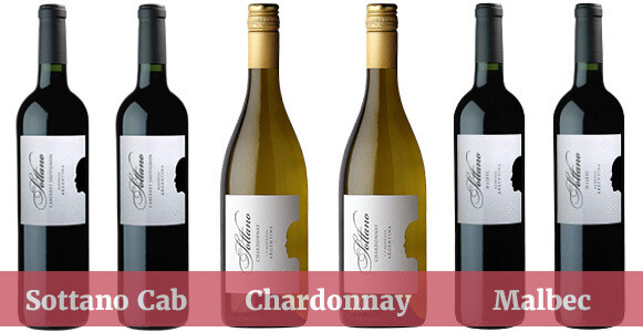 Sottano Mixed Wine Enjoyment Pack