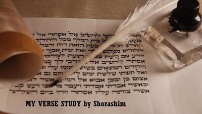 MY VERSE study by SHORASHIM