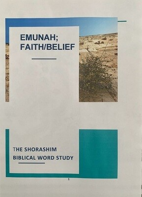 THE SHORASHIM BIBLICAL WORD STUDY