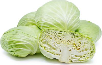 扁椰菜 / Flat Green Cabbage (~ 1 kg)