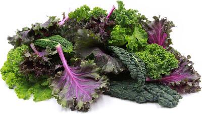 雜錦羽衣甘藍 / Mixed Kale