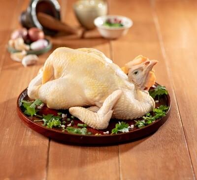 平原鷄 / Ping Yuen Chicken (1.2 - 1.25 kg) (2 天預訂 / 2 Days Preorder)