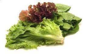 沙律菜 / Salad Mix (300 g)