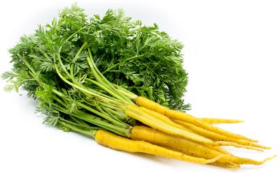 黃甘筍 / Yellow Carrot (300 g)