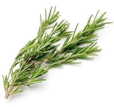 迷迭香 / Rosemary (20 g)