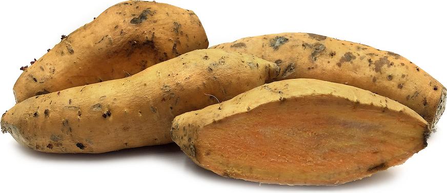 印尼火山黃蕃薯 / Indonesian Yellow Sweet Yam (600 g)