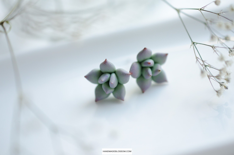 Green succulent stud earrings, Cactus, Botanical earrings