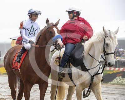 Justify in Preakness Post Parade