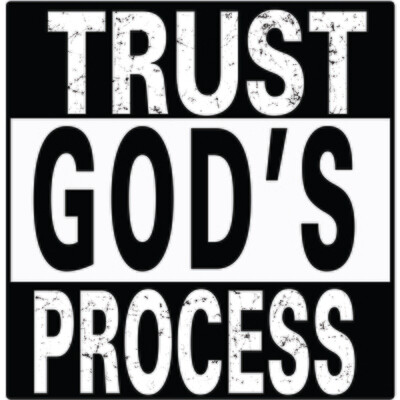 Trust God's Process (T-Shirt)