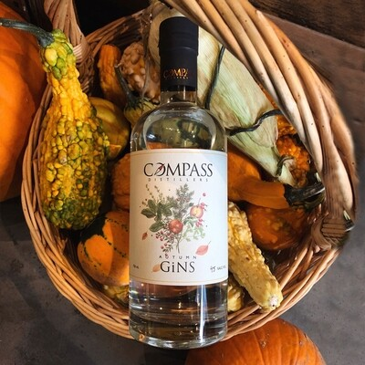 Autumn GiNS