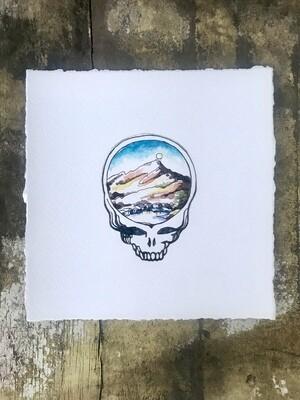 Mount Tamalpais Stealie