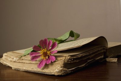 Learn to access your own akashic records! 4 - 90 min sessions (payment plans available on request)