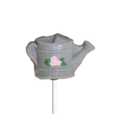 Watering Can Case 24