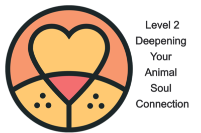 Level 2 Deepening Your Animal Soul Connection Mentoring Program