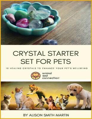 Crystal Starter Set For Pets - Booklet Only