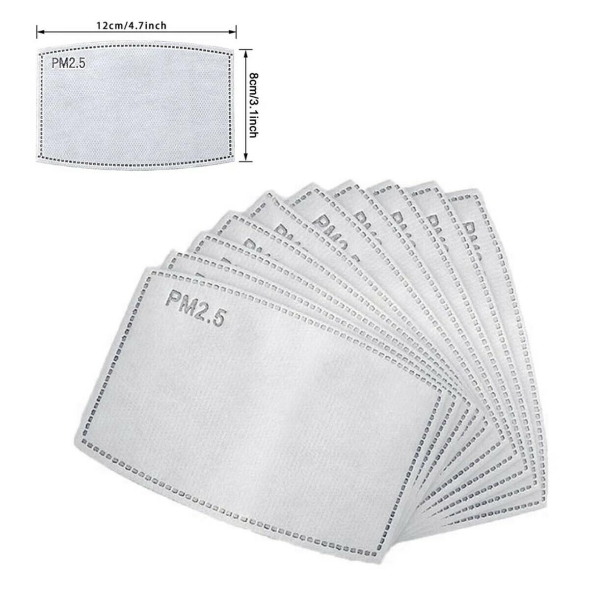 Mask Filter - 10 pack Adult Size