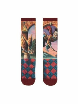 Harry Potter and the Sorcerer's Stone socks