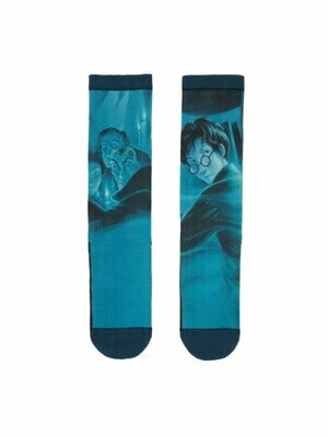 Harry Potter and the Order of the Phoenix socks