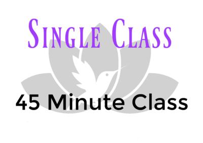 Single Class- 45 Minutes