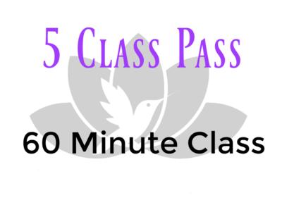 5 Class Pass- 60 Minute