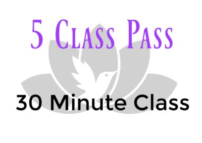 5 Class Pass- 30 Minute