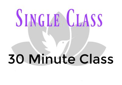Single Class- 30 Minute