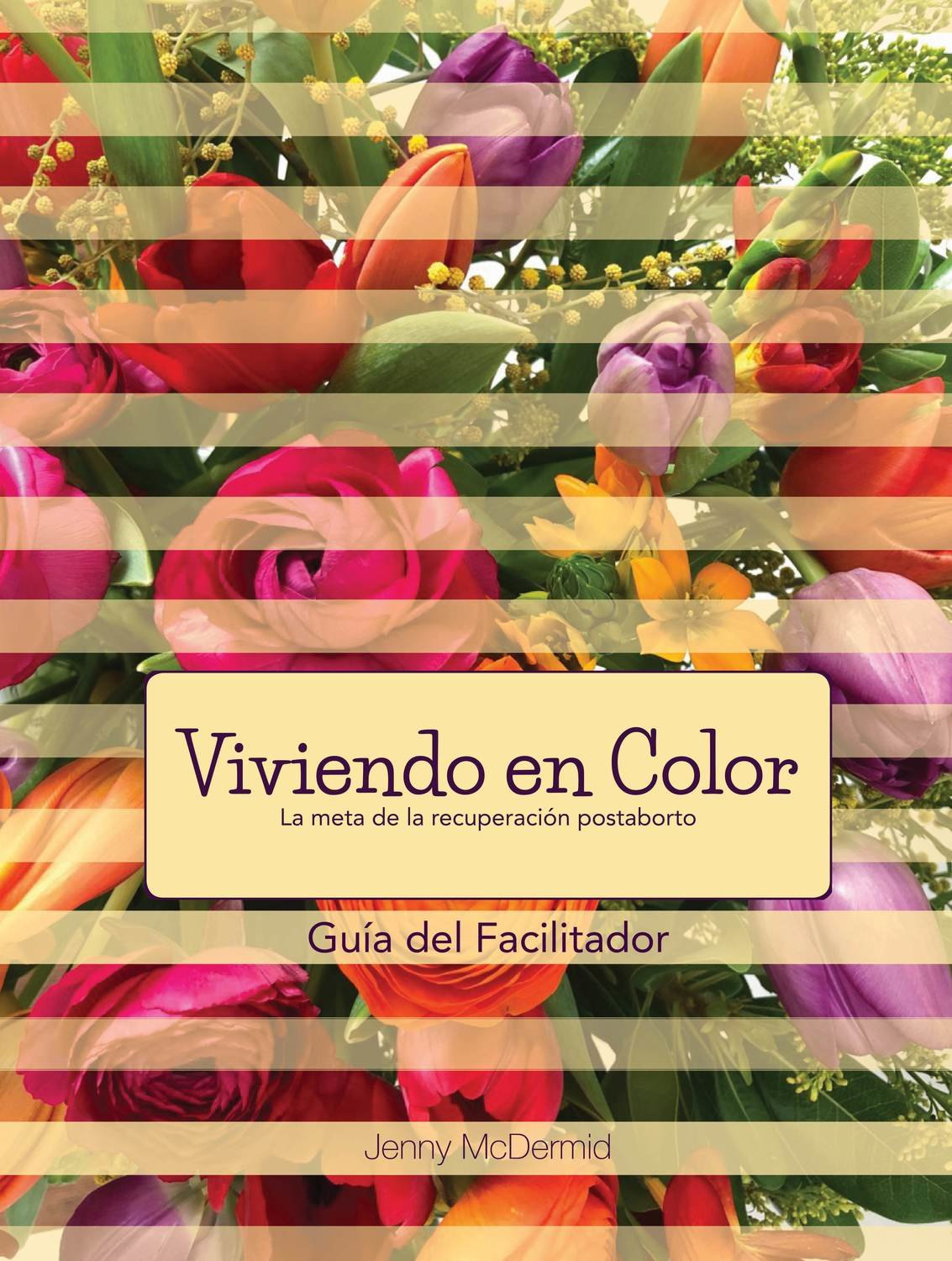 Viviendo en Color - Guia del Facilitador PDF (download)
