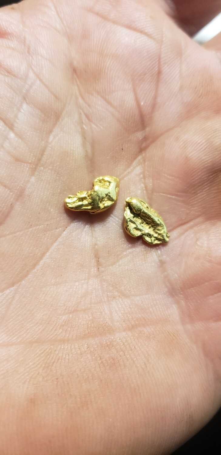 #4 Mesh Gold Nuggets - 2 grams of #4 gold