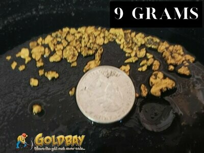 9 gram Chunky Paydirt - Approx 5lbs
