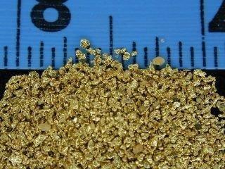 #25 Mesh Gold Dust - 1 gram of #25 gold