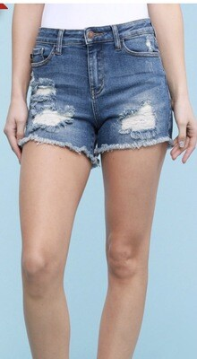 Judy Blue Distressed Plus Shorts