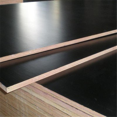 Plywood Black Film