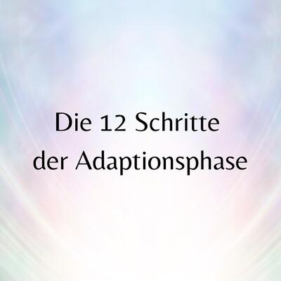 Die 12 Schritte der Adaptionsphase