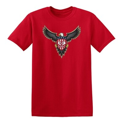 American Eagle GRAPHIC TEE