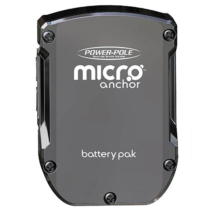 MICRO BATTERY PAK - LITHIUM BA