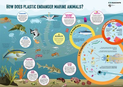 Poster: How does plastic endanger marine animals?