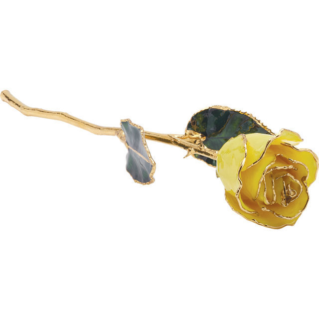 C4B Real 24K Yellow Rose With Gold Trim