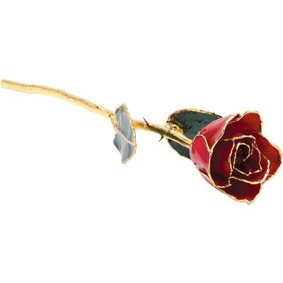 C4B Real 24K Gold Rose With Gold Trim