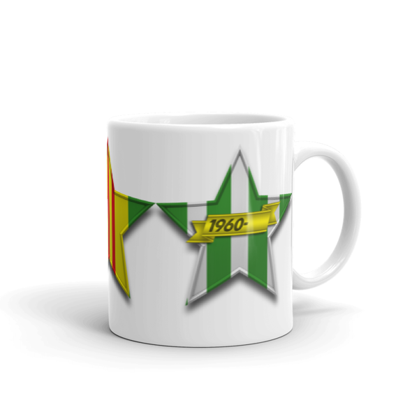 VIETNAM VETERAN 3-STAR Mug made in the USA