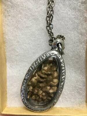 Thornapple Amulet