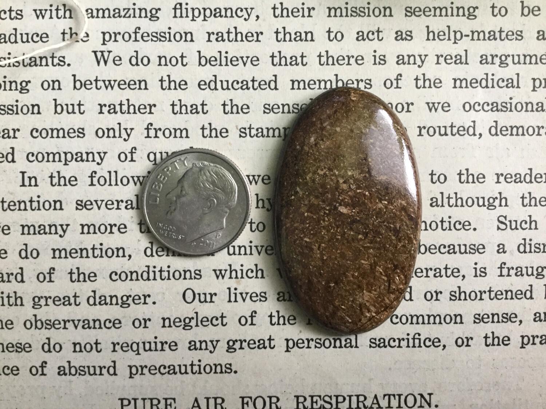 Bronzite Cabochon