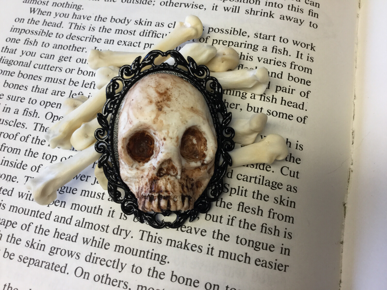 Human Skull Cameo