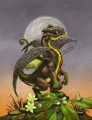 Avocado Dragon