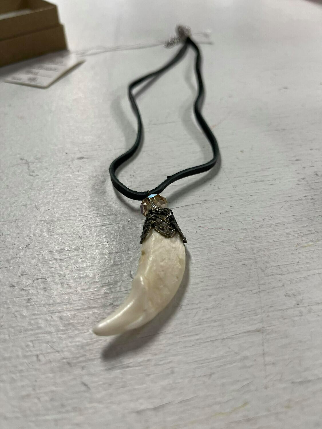 Unclaimed Item #11 - Basset Hound Tooth Necklace